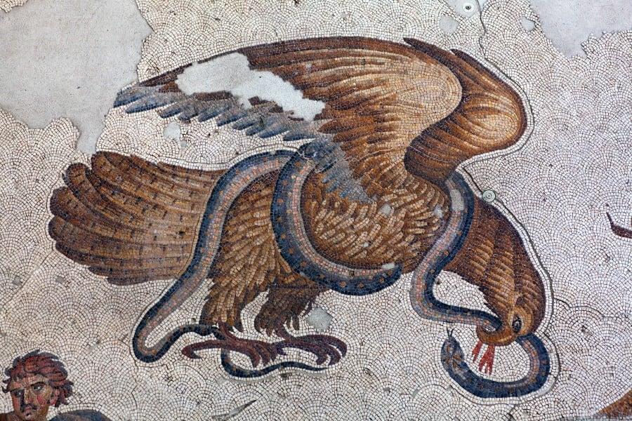 Сокол и змея в музее мозаики в Стамбуле