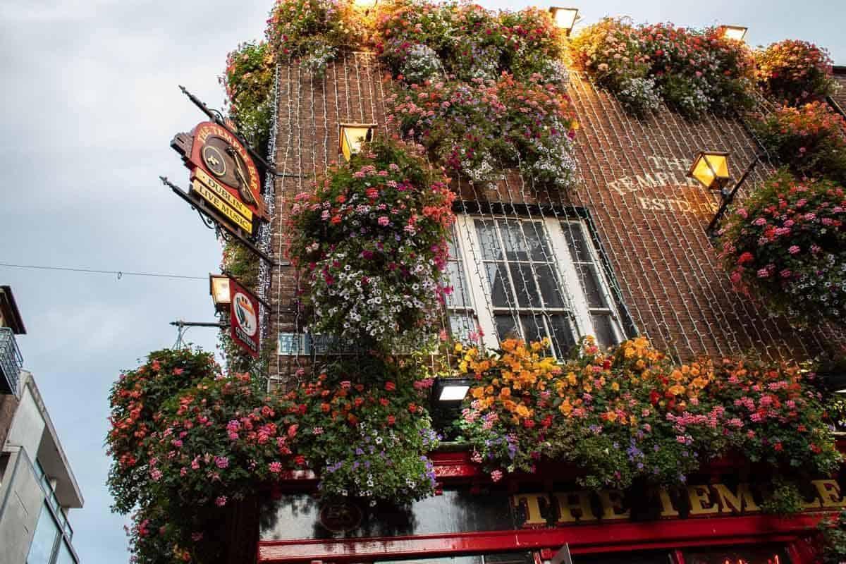 Красивейший фасад с тысячами цветов на Темпл Баре