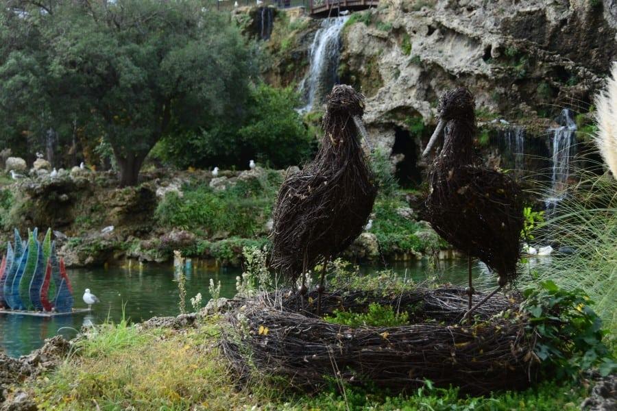 Стамбульский зоопарк в Турции